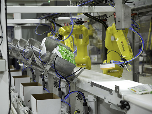Robotic Top Load Case/Carton Packers